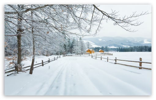 Winter In The Carpathians ❤ 4K UHD Wallpaper for Wide 16:10 5:3 Widescreen WHXGA WQXGA WUXGA WXGA WGA ; 4K UHD 16:9 Ultra High Definition 2160p 1440p 1080p 900p 720p ; Standard 4:3 5:4 3:2 Fullscreen UXGA XGA SVGA QSXGA SXGA DVGA HVGA HQVGA ( Apple PowerBook G4 iPhone 4 3G 3GS iPod Touch ) ; Tablet 1:1 ; iPad 1/2/Mini ; Mobile 4:3 5:3 3:2 16:9 5:4 - UXGA XGA SVGA WGA DVGA HVGA HQVGA ( Apple PowerBook G4 iPhone 4 3G 3GS iPod Touch ) 2160p 1440p 1080p 900p 720p QSXGA SXGA ; Dual 16:10 5:3 4:3 5:4 WHXGA WQXGA WUXGA WXGA WGA UXGA XGA SVGA QSXGA SXGA ;