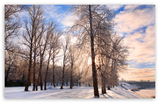 Winter In The Park HD wallpaper for Wide 16:10 5:3 Widescreen WHXGA WQXGA WUXGA WXGA WGA ; HD 16:9 High Definition WQHD QWXGA 1080p 900p 720p QHD nHD ; Standard 4:3 5:4 3:2 Fullscreen UXGA XGA SVGA QSXGA SXGA DVGA HVGA HQVGA devices ( Apple PowerBook G4 iPhone 4 3G 3GS iPod Touch ) ; Tablet 1:1 ; iPad 1/2/Mini ; Mobile 4:3 5:3 3:2 16:9 5:4 - UXGA XGA SVGA WGA DVGA HVGA HQVGA devices ( Apple PowerBook G4 iPhone 4 3G 3GS iPod Touch ) WQHD QWXGA 1080p 900p 720p QHD nHD QSXGA SXGA ; Dual 16:10 5:3 4:3 5:4 WHXGA WQXGA WUXGA WXGA WGA UXGA XGA SVGA QSXGA SXGA ;