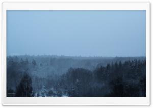 Winter in the woods ART.IRBIS Production Ultra HD Wallpaper for 4K UHD Widescreen desktop, tablet & smartphone
