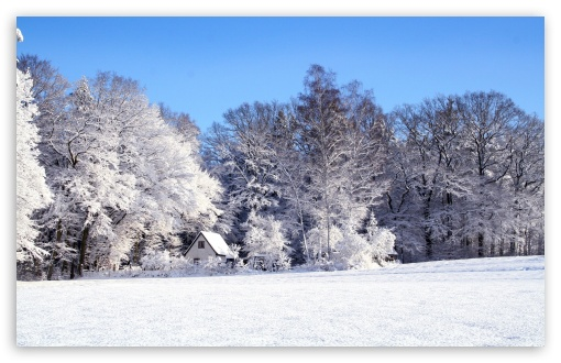 Winter Landscape ❤ 4K UHD Wallpaper for Wide 16:10 5:3 Widescreen WHXGA WQXGA WUXGA WXGA WGA ; 4K UHD 16:9 Ultra High Definition 2160p 1440p 1080p 900p 720p ; Standard 4:3 5:4 3:2 Fullscreen UXGA XGA SVGA QSXGA SXGA DVGA HVGA HQVGA ( Apple PowerBook G4 iPhone 4 3G 3GS iPod Touch ) ; Smartphone 5:3 WGA ; Tablet 1:1 ; iPad 1/2/Mini ; Mobile 4:3 5:3 3:2 16:9 5:4 - UXGA XGA SVGA WGA DVGA HVGA HQVGA ( Apple PowerBook G4 iPhone 4 3G 3GS iPod Touch ) 2160p 1440p 1080p 900p 720p QSXGA SXGA ;