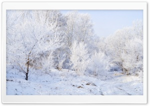 Winter Landscape Background Ultra HD Wallpaper for 4K UHD Widescreen desktop, tablet & smartphone