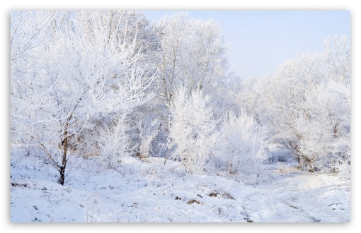 Winter Landscape Background UltraHD Wallpaper for Wide 16:10 5:3 Widescreen WHXGA WQXGA WUXGA WXGA WGA ; 8K UHD TV 16:9 Ultra High Definition 2160p 1440p 1080p 900p 720p ; Standard 4:3 5:4 3:2 Fullscreen UXGA XGA SVGA QSXGA SXGA DVGA HVGA HQVGA ( Apple PowerBook G4 iPhone 4 3G 3GS iPod Touch ) ; Tablet 1:1 ; iPad 1/2/Mini ; Mobile 4:3 5:3 3:2 16:9 5:4 - UXGA XGA SVGA WGA DVGA HVGA HQVGA ( Apple PowerBook G4 iPhone 4 3G 3GS iPod Touch ) 2160p 1440p 1080p 900p 720p QSXGA SXGA ;