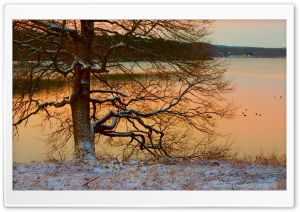 Winter Landscape Nature 24 HD Wide Wallpaper for Widescreen
