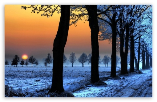 Winter Landscape With Orange Sky HD wallpaper for Wide 16:10 5:3 Widescreen WHXGA WQXGA WUXGA WXGA WGA ; HD 16:9 High Definition WQHD QWXGA 1080p 900p 720p QHD nHD ; Standard 4:3 5:4 3:2 Fullscreen UXGA XGA SVGA QSXGA SXGA DVGA HVGA HQVGA devices ( Apple PowerBook G4 iPhone 4 3G 3GS iPod Touch ) ; Tablet 1:1 ; iPad 1/2/Mini ; Mobile 4:3 5:3 3:2 16:9 5:4 - UXGA XGA SVGA WGA DVGA HVGA HQVGA devices ( Apple PowerBook G4 iPhone 4 3G 3GS iPod Touch ) WQHD QWXGA 1080p 900p 720p QHD nHD QSXGA SXGA ;