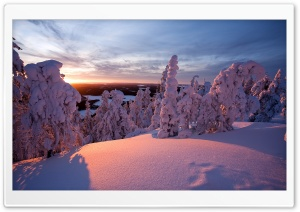 Winter, Lapland, Finland HD Wide Wallpaper for 4K UHD Widescreen desktop & smartphone