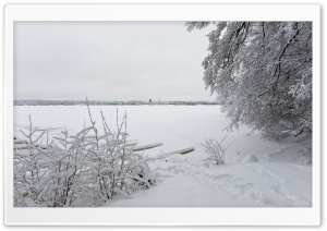Winter, Littoinen, Finland HD Wide Wallpaper for Widescreen