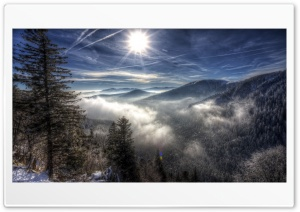 Winter Magnificence HD Wide Wallpaper for Widescreen
