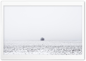 Winter Melancholy HD Wide Wallpaper for Widescreen