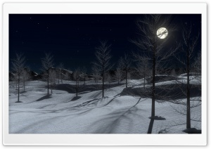 Winter Midnight 3D HD Wide Wallpaper for Widescreen