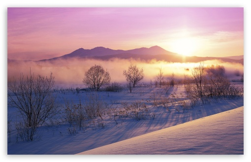 Winter Mist ❤ 4K UHD Wallpaper for Wide 16:10 5:3 Widescreen WHXGA WQXGA WUXGA WXGA WGA ; 4K UHD 16:9 Ultra High Definition 2160p 1440p 1080p 900p 720p ; Standard 4:3 5:4 3:2 Fullscreen UXGA XGA SVGA QSXGA SXGA DVGA HVGA HQVGA ( Apple PowerBook G4 iPhone 4 3G 3GS iPod Touch ) ; Tablet 1:1 ; iPad 1/2/Mini ; Mobile 4:3 5:3 3:2 16:9 5:4 - UXGA XGA SVGA WGA DVGA HVGA HQVGA ( Apple PowerBook G4 iPhone 4 3G 3GS iPod Touch ) 2160p 1440p 1080p 900p 720p QSXGA SXGA ;