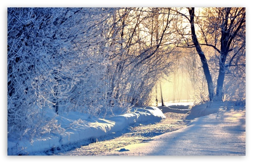 Winter Morning Light HD wallpaper for Wide 16:10 5:3 Widescreen WHXGA WQXGA WUXGA WXGA WGA ; HD 16:9 High Definition WQHD QWXGA 1080p 900p 720p QHD nHD ; Standard 4:3 5:4 3:2 Fullscreen UXGA XGA SVGA QSXGA SXGA DVGA HVGA HQVGA devices ( Apple PowerBook G4 iPhone 4 3G 3GS iPod Touch ) ; Tablet 1:1 ; iPad 1/2/Mini ; Mobile 4:3 5:3 3:2 16:9 5:4 - UXGA XGA SVGA WGA DVGA HVGA HQVGA devices ( Apple PowerBook G4 iPhone 4 3G 3GS iPod Touch ) WQHD QWXGA 1080p 900p 720p QHD nHD QSXGA SXGA ; Dual 5:4 QSXGA SXGA ;