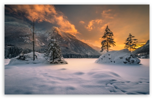 Winter Nature Ultra Hd Desktop Background Wallpaper For 4k