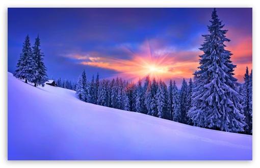 Winter Nature Ultra Hd Desktop Background Wallpaper For 4k Uhd Tv Tablet Smartphone