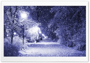 Winter Night HD Wide Wallpaper for 4K UHD Widescreen desktop & smartphone
