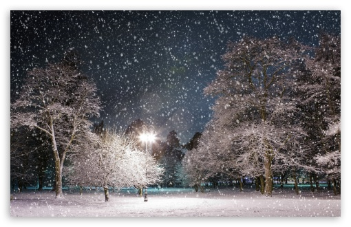 Winter Night HD wallpaper for Standard 4:3 5:4 Fullscreen UXGA XGA SVGA QSXGA SXGA ; Wide 16:10 5:3 Widescreen WHXGA WQXGA WUXGA WXGA WGA ; HD 16:9 High Definition WQHD QWXGA 1080p 900p 720p QHD nHD ; Other 3:2 DVGA HVGA HQVGA devices ( Apple PowerBook G4 iPhone 4 3G 3GS iPod Touch ) ; Mobile VGA WVGA iPhone iPad PSP Phone - VGA QVGA Smartphone ( PocketPC GPS iPod Zune BlackBerry HTC Samsung LG Nokia Eten Asus ) WVGA WQVGA Smartphone ( HTC Samsung Sony Ericsson LG Vertu MIO ) HVGA Smartphone ( Apple iPhone iPod BlackBerry HTC Samsung Nokia ) Sony PSP Zune HD Zen ; Tablet 2 Android 3 DVGA HVGA HQVGA devices ( Apple PowerBook G4 iPhone 4 3G 3GS iPod Touch ) ; Dual 4:3 5:4 16:10 5:3 16:9 UXGA XGA SVGA QSXGA SXGA WHXGA WQXGA WUXGA WXGA WGA WQHD QWXGA 1080p 900p 720p QHD nHD ;