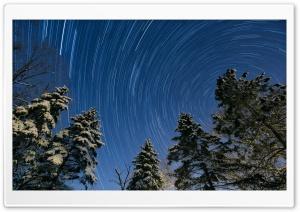 Winter, Night, Star Trail, Snowy Trees Ultra HD Wallpaper for 4K UHD Widescreen desktop, tablet & smartphone