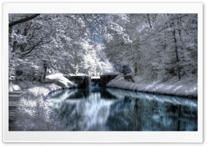 Winter Reflections HD Wide Wallpaper for Widescreen