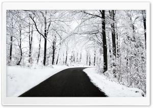 Winter Road HD Wide Wallpaper for 4K UHD Widescreen desktop & smartphone