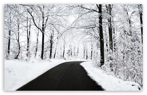Winter Road HD wallpaper for Wide 16:10 5:3 Widescreen WHXGA WQXGA WUXGA WXGA WGA ; HD 16:9 High Definition WQHD QWXGA 1080p 900p 720p QHD nHD ; Standard 4:3 5:4 3:2 Fullscreen UXGA XGA SVGA QSXGA SXGA DVGA HVGA HQVGA devices ( Apple PowerBook G4 iPhone 4 3G 3GS iPod Touch ) ; Tablet 1:1 ; iPad 1/2/Mini ; Mobile 4:3 5:3 3:2 16:9 5:4 - UXGA XGA SVGA WGA DVGA HVGA HQVGA devices ( Apple PowerBook G4 iPhone 4 3G 3GS iPod Touch ) WQHD QWXGA 1080p 900p 720p QHD nHD QSXGA SXGA ; Dual 5:4 QSXGA SXGA ;