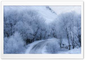 Winter Road Ultra HD Wallpaper for 4K UHD Widescreen desktop, tablet & smartphone