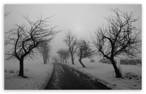 Winter Road Black And White HD wallpaper for Wide 16:10 5:3 Widescreen WHXGA WQXGA WUXGA WXGA WGA ; HD 16:9 High Definition WQHD QWXGA 1080p 900p 720p QHD nHD ; Standard 4:3 5:4 3:2 Fullscreen UXGA XGA SVGA QSXGA SXGA DVGA HVGA HQVGA devices ( Apple PowerBook G4 iPhone 4 3G 3GS iPod Touch ) ; iPad 1/2/Mini ; Mobile 4:3 5:3 3:2 16:9 5:4 - UXGA XGA SVGA WGA DVGA HVGA HQVGA devices ( Apple PowerBook G4 iPhone 4 3G 3GS iPod Touch ) WQHD QWXGA 1080p 900p 720p QHD nHD QSXGA SXGA ;