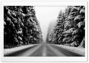 Winter Road Black And White HD Wide Wallpaper for 4K UHD Widescreen desktop & smartphone