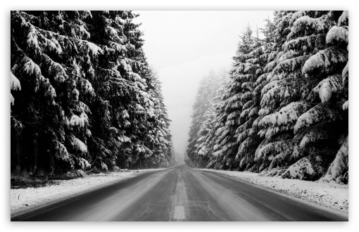 Winter Road Black And White HD wallpaper for Wide 16:10 5:3 Widescreen WHXGA WQXGA WUXGA WXGA WGA ; HD 16:9 High Definition WQHD QWXGA 1080p 900p 720p QHD nHD ; Standard 4:3 5:4 3:2 Fullscreen UXGA XGA SVGA QSXGA SXGA DVGA HVGA HQVGA devices ( Apple PowerBook G4 iPhone 4 3G 3GS iPod Touch ) ; Tablet 1:1 ; iPad 1/2/Mini ; Mobile 4:3 5:3 3:2 16:9 5:4 - UXGA XGA SVGA WGA DVGA HVGA HQVGA devices ( Apple PowerBook G4 iPhone 4 3G 3GS iPod Touch ) WQHD QWXGA 1080p 900p 720p QHD nHD QSXGA SXGA ; Dual 16:10 5:3 16:9 4:3 5:4 WHXGA WQXGA WUXGA WXGA WGA WQHD QWXGA 1080p 900p 720p QHD nHD UXGA XGA SVGA QSXGA SXGA ;