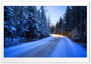 Winter Road Day Light HD Wide Wallpaper for Widescreen