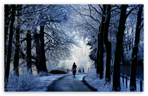 Winter Road Scene HD wallpaper for Wide 16:10 5:3 Widescreen WHXGA WQXGA WUXGA WXGA WGA ; HD 16:9 High Definition WQHD QWXGA 1080p 900p 720p QHD nHD ; UHD 16:9 WQHD QWXGA 1080p 900p 720p QHD nHD ; Standard 4:3 5:4 3:2 Fullscreen UXGA XGA SVGA QSXGA SXGA DVGA HVGA HQVGA devices ( Apple PowerBook G4 iPhone 4 3G 3GS iPod Touch ) ; Tablet 1:1 ; iPad 1/2/Mini ; Mobile 4:3 5:3 3:2 16:9 5:4 - UXGA XGA SVGA WGA DVGA HVGA HQVGA devices ( Apple PowerBook G4 iPhone 4 3G 3GS iPod Touch ) WQHD QWXGA 1080p 900p 720p QHD nHD QSXGA SXGA ;