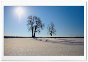 Winter Scenery 16 HD Wide Wallpaper for Widescreen