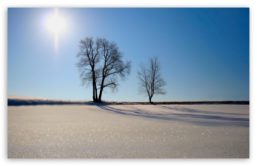 Winter Scenery 16 HD wallpaper for Wide 16:10 5:3 Widescreen WHXGA WQXGA WUXGA WXGA WGA ; HD 16:9 High Definition WQHD QWXGA 1080p 900p 720p QHD nHD ; Standard 4:3 5:4 3:2 Fullscreen UXGA XGA SVGA QSXGA SXGA DVGA HVGA HQVGA devices ( Apple PowerBook G4 iPhone 4 3G 3GS iPod Touch ) ; Tablet 1:1 ; iPad 1/2/Mini ; Mobile 4:3 5:3 3:2 16:9 5:4 - UXGA XGA SVGA WGA DVGA HVGA HQVGA devices ( Apple PowerBook G4 iPhone 4 3G 3GS iPod Touch ) WQHD QWXGA 1080p 900p 720p QHD nHD QSXGA SXGA ;