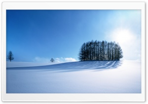 Winter Scenery, Japan HD Wide Wallpaper for Widescreen