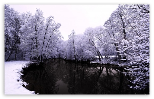 Winter Scenes 1 UltraHD Wallpaper for Wide 16:10 5:3 Widescreen WHXGA WQXGA WUXGA WXGA WGA ; 8K UHD TV 16:9 Ultra High Definition 2160p 1440p 1080p 900p 720p ; Standard 4:3 5:4 3:2 Fullscreen UXGA XGA SVGA QSXGA SXGA DVGA HVGA HQVGA ( Apple PowerBook G4 iPhone 4 3G 3GS iPod Touch ) ; Tablet 1:1 ; iPad 1/2/Mini ; Mobile 4:3 5:3 3:2 16:9 5:4 - UXGA XGA SVGA WGA DVGA HVGA HQVGA ( Apple PowerBook G4 iPhone 4 3G 3GS iPod Touch ) 2160p 1440p 1080p 900p 720p QSXGA SXGA ;