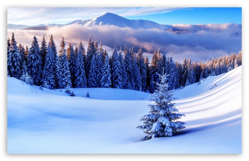 Winter Season, Mountains ❤ 4K UHD Wallpaper for Wide 16:10 5:3 Widescreen WHXGA WQXGA WUXGA WXGA WGA ; UltraWide 21:9 24:10 ; 4K UHD 16:9 Ultra High Definition 2160p 1440p 1080p 900p 720p ; UHD 16:9 2160p 1440p 1080p 900p 720p ; Standard 4:3 5:4 3:2 Fullscreen UXGA XGA SVGA QSXGA SXGA DVGA HVGA HQVGA ( Apple PowerBook G4 iPhone 4 3G 3GS iPod Touch ) ; Smartphone 16:9 3:2 5:3 2160p 1440p 1080p 900p 720p DVGA HVGA HQVGA ( Apple PowerBook G4 iPhone 4 3G 3GS iPod Touch ) WGA ; Tablet 1:1 ; iPad 1/2/Mini ; Mobile 4:3 5:3 3:2 16:9 5:4 - UXGA XGA SVGA WGA DVGA HVGA HQVGA ( Apple PowerBook G4 iPhone 4 3G 3GS iPod Touch ) 2160p 1440p 1080p 900p 720p QSXGA SXGA ; Dual 16:10 5:3 16:9 4:3 5:4 3:2 WHXGA WQXGA WUXGA WXGA WGA 2160p 1440p 1080p 900p 720p UXGA XGA SVGA QSXGA SXGA DVGA HVGA HQVGA ( Apple PowerBook G4 iPhone 4 3G 3GS iPod Touch ) ;
