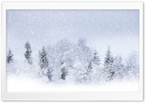 Winter Snow HD Wide Wallpaper for 4K UHD Widescreen desktop & smartphone