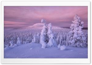 Winter Snow Ultra HD Wallpaper for 4K UHD Widescreen desktop, tablet & smartphone