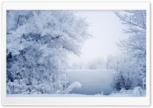 Winter Snow Background HD Wide Wallpaper for Widescreen