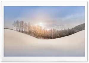 Winter, Snow, Hills, Sunlight, Trees Ultra HD Wallpaper for 4K UHD Widescreen desktop, tablet & smartphone