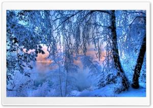 Winter, Snow, Lake, Trees Ultra HD Wallpaper for 4K UHD Widescreen desktop, tablet & smartphone