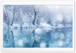 Winter Snowfall HD Wide Wallpaper for Widescreen