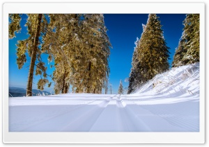 Winter Snowy Road Scenery HD Wide Wallpaper for Widescreen