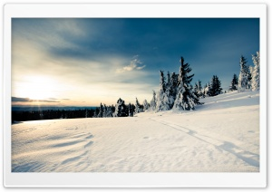 Winter Sun Ultra HD Wallpaper for 4K UHD Widescreen desktop, tablet & smartphone