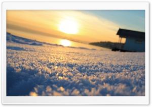 Winter Sun HD Wide Wallpaper for Widescreen