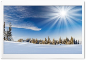 Winter Sunlight HD Wide Wallpaper for 4K UHD Widescreen desktop & smartphone