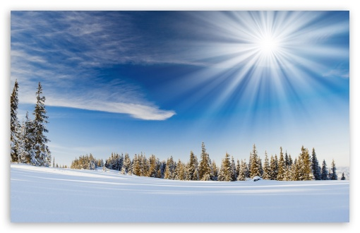 Winter Sunlight ❤ 4K UHD Wallpaper for Wide 16:10 5:3 Widescreen WHXGA WQXGA WUXGA WXGA WGA ; 4K UHD 16:9 Ultra High Definition 2160p 1440p 1080p 900p 720p ; Standard 4:3 5:4 3:2 Fullscreen UXGA XGA SVGA QSXGA SXGA DVGA HVGA HQVGA ( Apple PowerBook G4 iPhone 4 3G 3GS iPod Touch ) ; Tablet 1:1 ; iPad 1/2/Mini ; Mobile 4:3 5:3 3:2 16:9 5:4 - UXGA XGA SVGA WGA DVGA HVGA HQVGA ( Apple PowerBook G4 iPhone 4 3G 3GS iPod Touch ) 2160p 1440p 1080p 900p 720p QSXGA SXGA ; Dual 16:10 5:3 16:9 4:3 5:4 WHXGA WQXGA WUXGA WXGA WGA 2160p 1440p 1080p 900p 720p UXGA XGA SVGA QSXGA SXGA ;