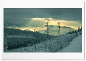 Winter Sunrays HD Wide Wallpaper for Widescreen