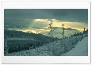 Winter Sunrays HD Wide Wallpaper for 4K UHD Widescreen desktop & smartphone