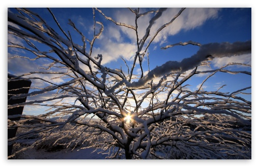Winter Sunrise 2 ❤ 4K UHD Wallpaper for Wide 16:10 5:3 Widescreen WHXGA WQXGA WUXGA WXGA WGA ; 4K UHD 16:9 Ultra High Definition 2160p 1440p 1080p 900p 720p ; UHD 16:9 2160p 1440p 1080p 900p 720p ; Standard 4:3 5:4 3:2 Fullscreen UXGA XGA SVGA QSXGA SXGA DVGA HVGA HQVGA ( Apple PowerBook G4 iPhone 4 3G 3GS iPod Touch ) ; Tablet 1:1 ; iPad 1/2/Mini ; Mobile 4:3 5:3 3:2 16:9 5:4 - UXGA XGA SVGA WGA DVGA HVGA HQVGA ( Apple PowerBook G4 iPhone 4 3G 3GS iPod Touch ) 2160p 1440p 1080p 900p 720p QSXGA SXGA ;