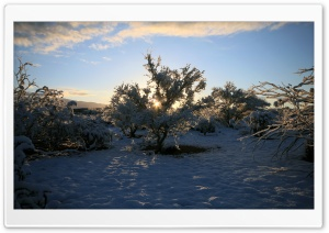 Winter Sunrise 3 HD Wide Wallpaper for Widescreen