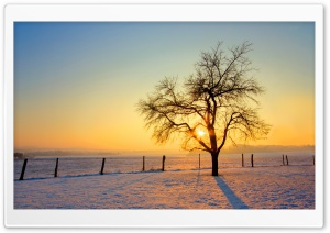 Winter Sunset HD Wide Wallpaper for Widescreen